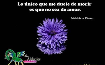 Frases celebres – Gabriel García Márquez -1|Amo Alebrijes