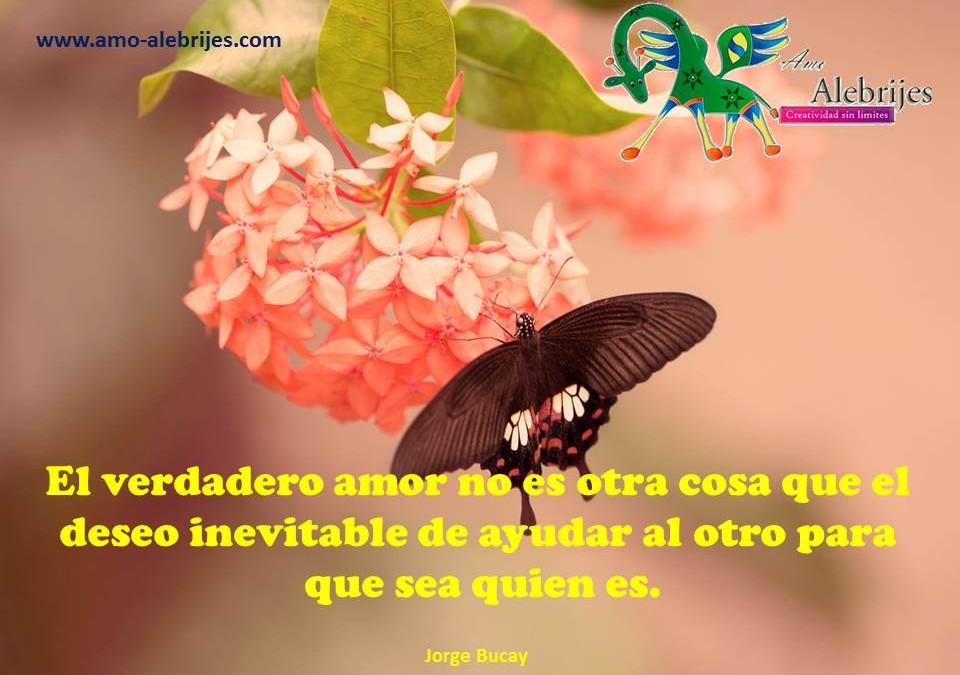 Frases celebres – Jorge Bucay -1|Amo Alebrijes