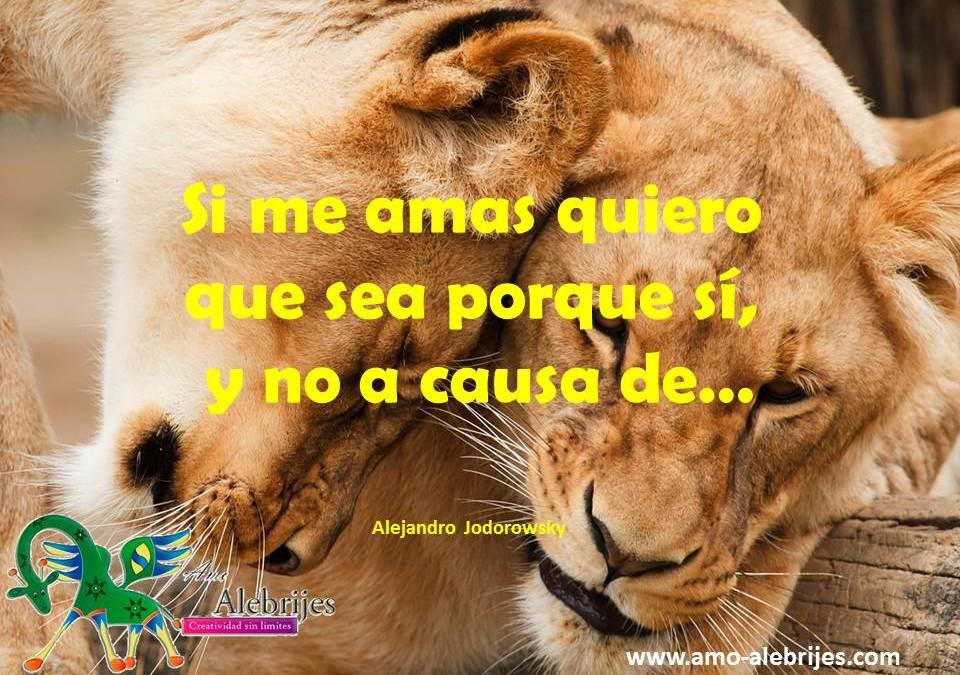 Frases celebres – Alejandro Jodorowsky -6|Amo Alebrijes
