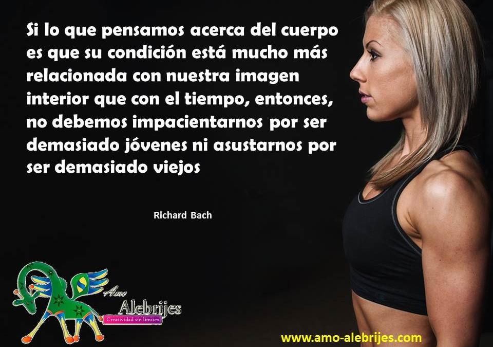 Frases celebres-Richard Bach-6