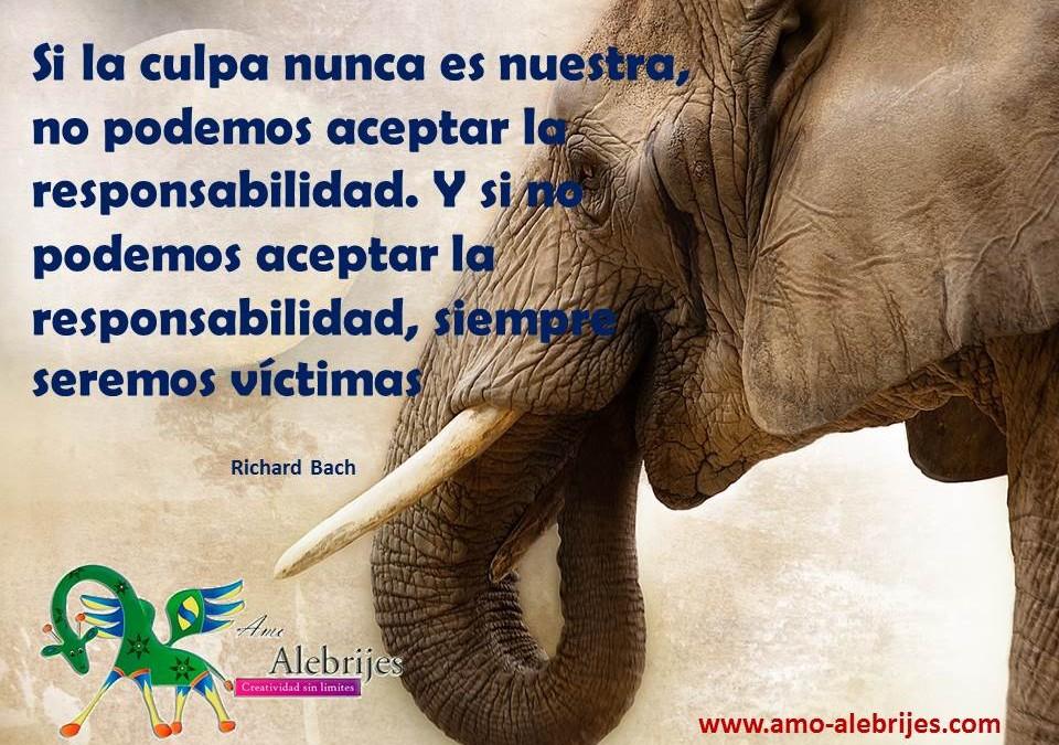 Frases celebres-Richard Bach-8