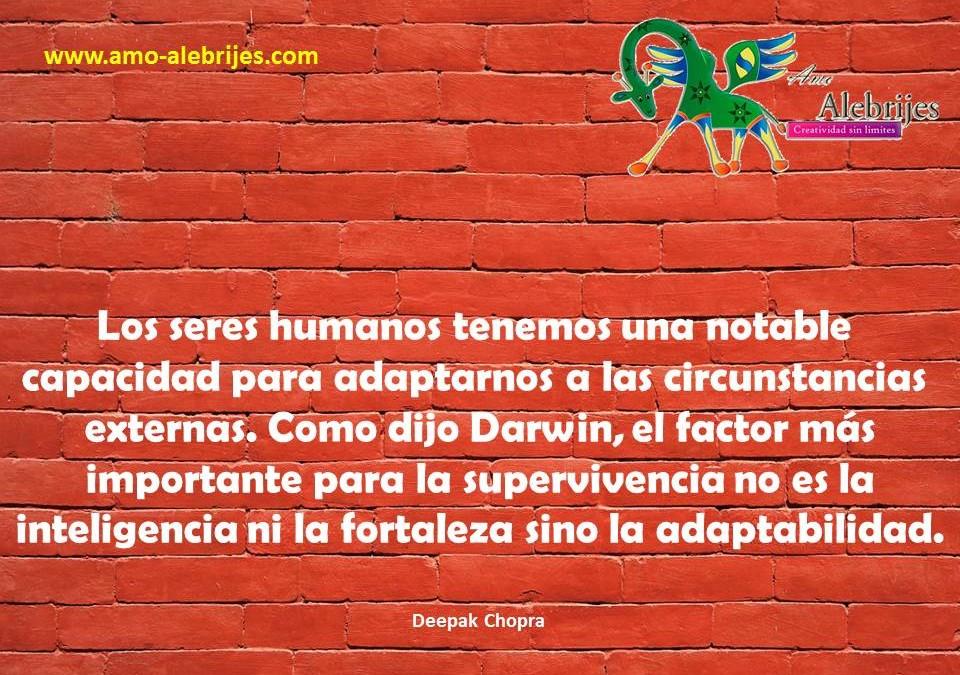 Frases celebres-Deepak Chopra-31