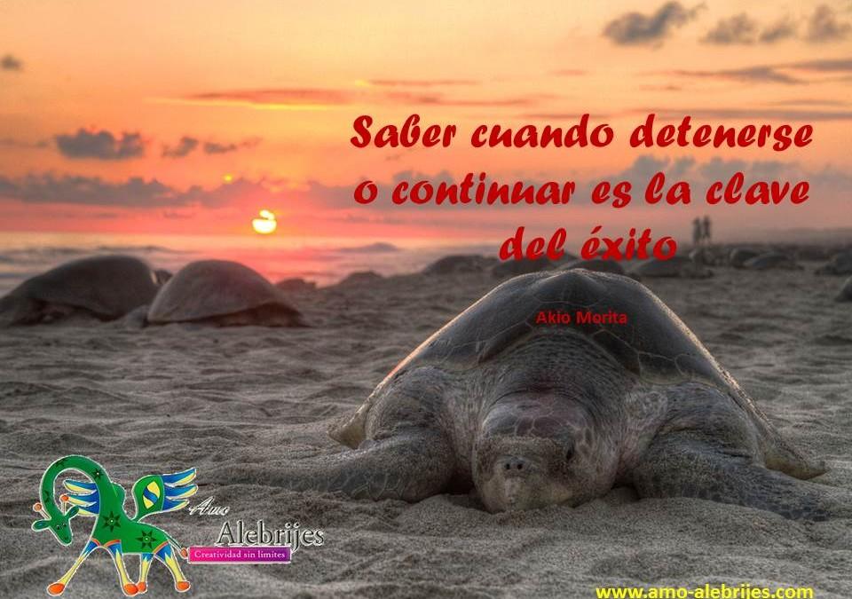 Frases celebres – Akio Morita -3 Amo Alebrijes