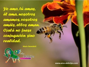 Frases celebres Mario Benedetti 1