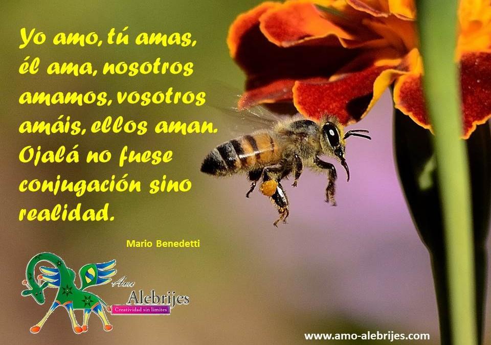 Frases celebres – Mario Benedetti -1|Amo Alebrijes