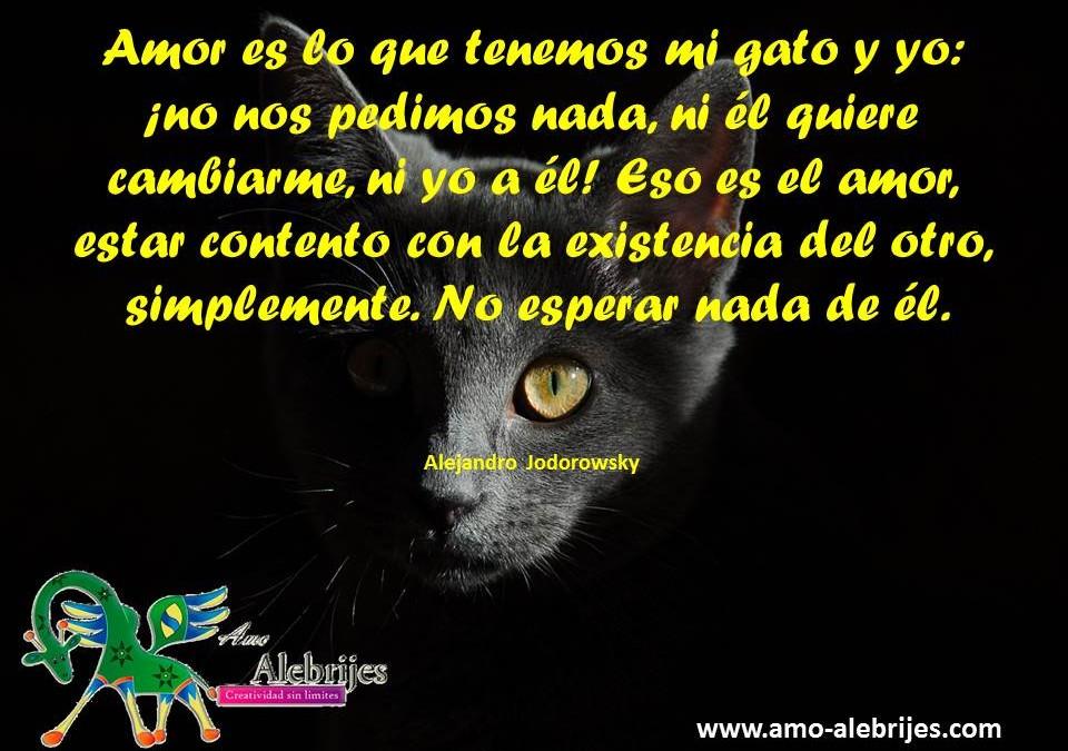 Frases celebres – Alejandro Jodorowsky -4|Amo Alebrijes