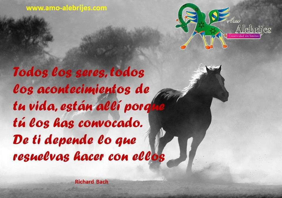 Frases celebres-Richard Bach-15