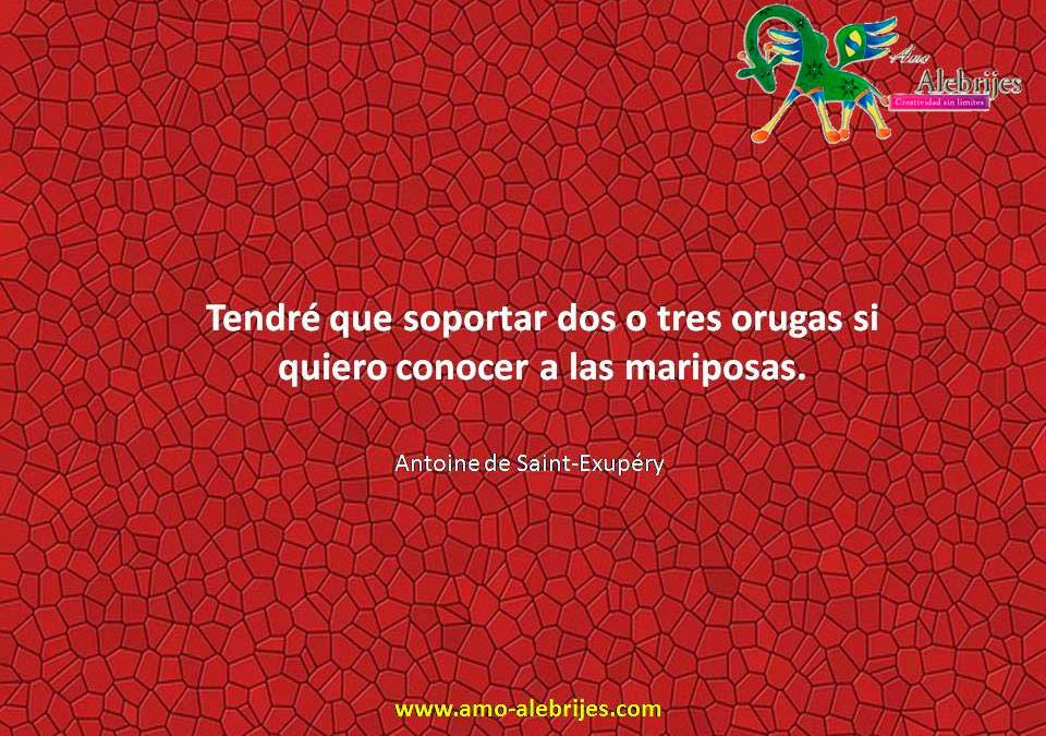 Frases celebres Antoine de Saint-Exupery 8