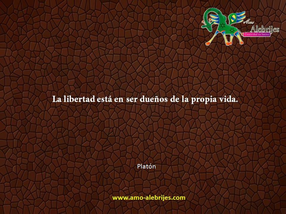 Frases celebres Platón 6