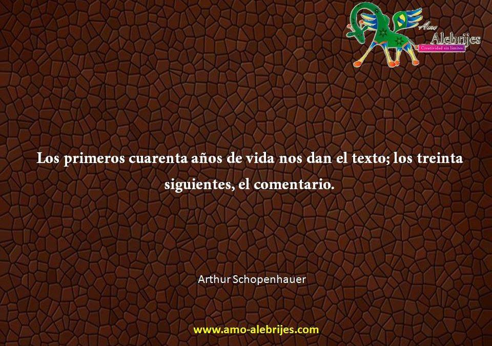 Frases celebres Arthur Schopenhauer 1