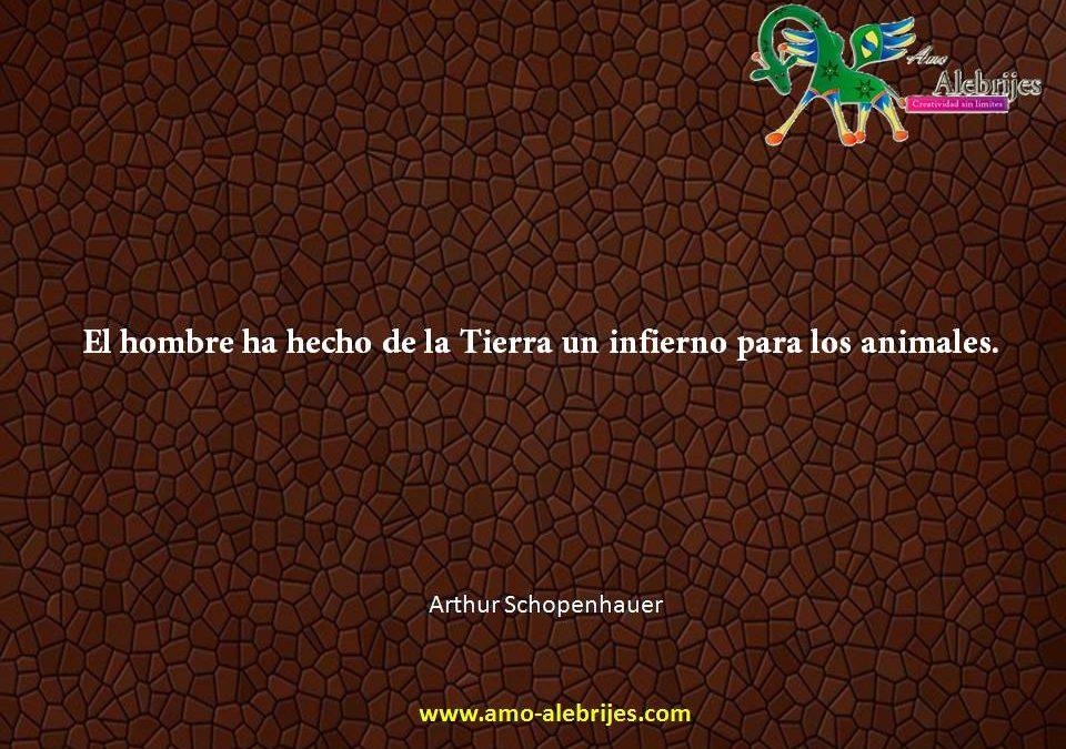 Frases celebres Arthur Schopenhauer 4