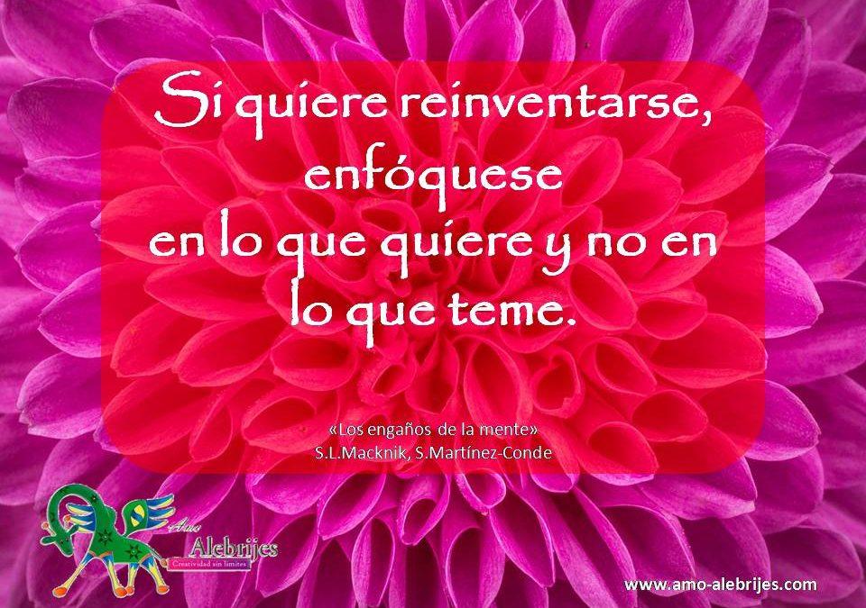 Frases celebres S L Macknik S Martinez-Conde 1