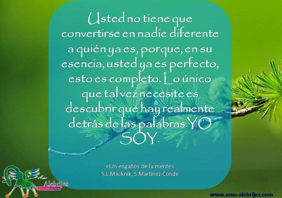 Frases celebres S L Macknik S Martinez-Conde 5