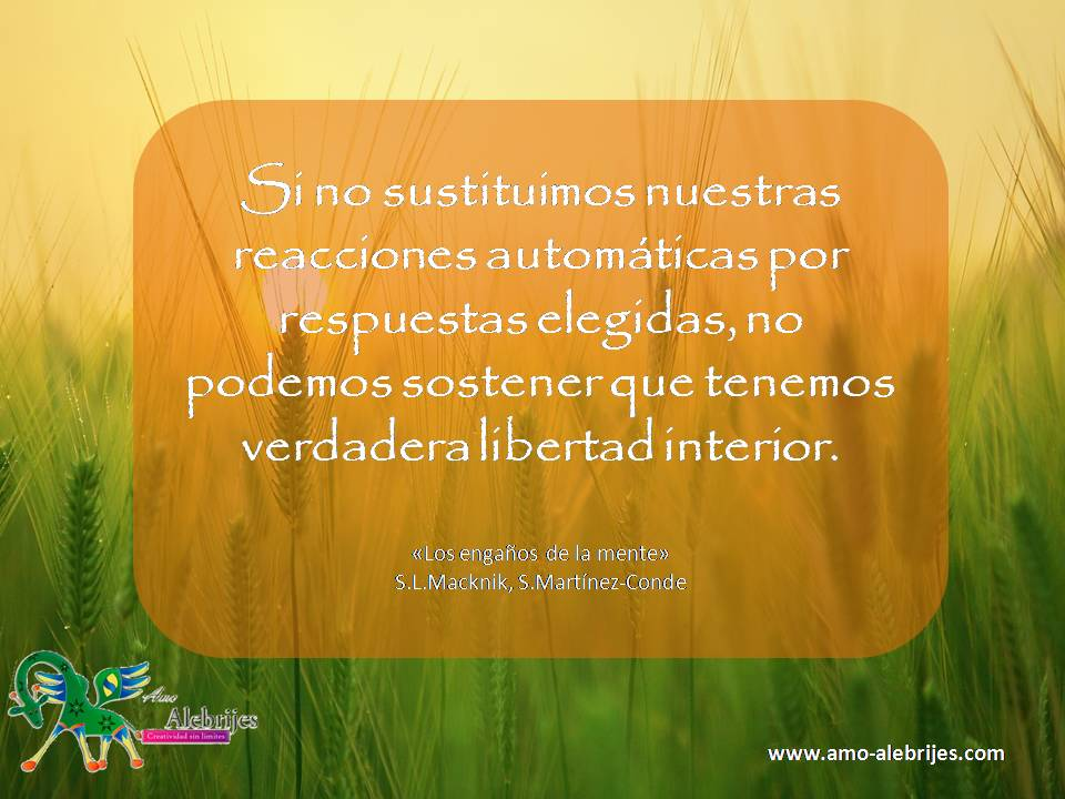 Frases celebres S L Macknik S Martinez-Conde 6