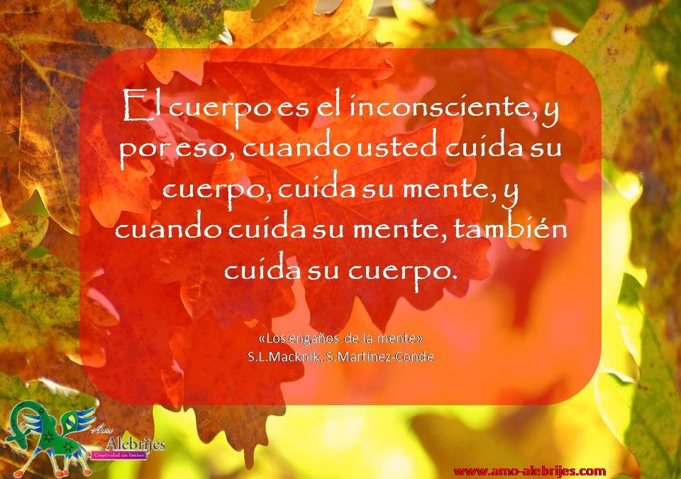 Frases celebres S L Macknik S Martinez-Conde 8