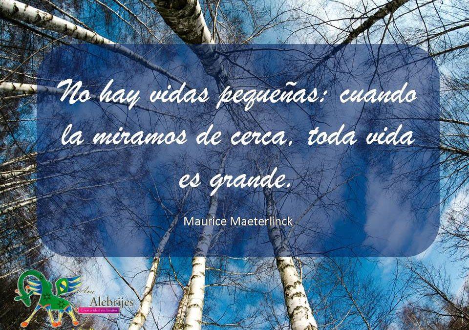 Frases celebres Maurice Maeterlinck 4