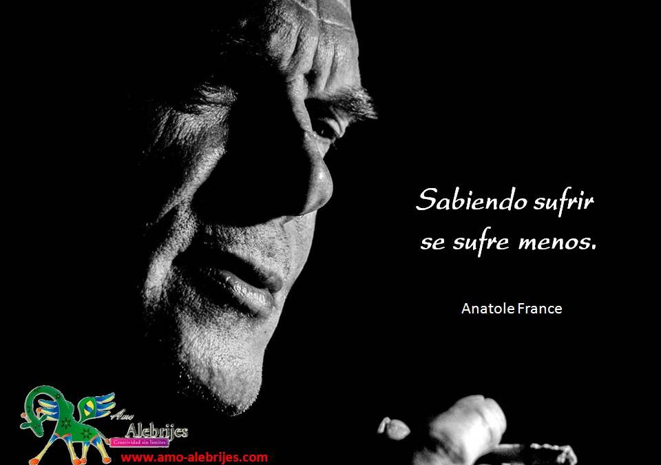 Frases celebres Anatole France 6