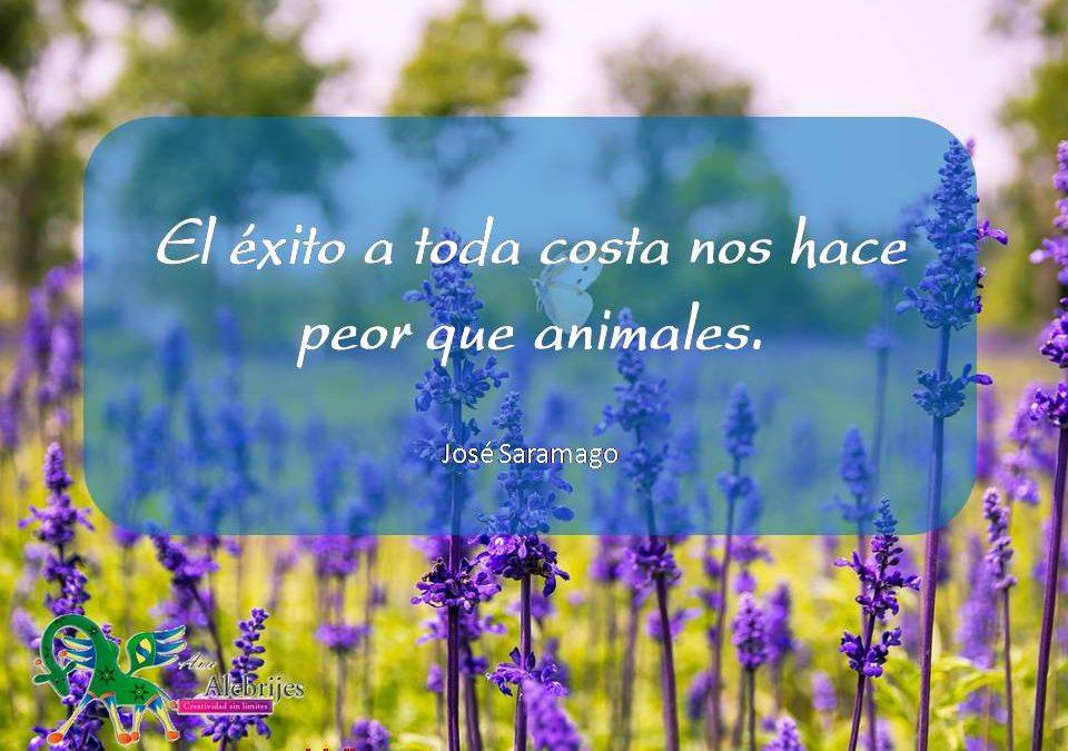 Frases celebres José Saramago 8