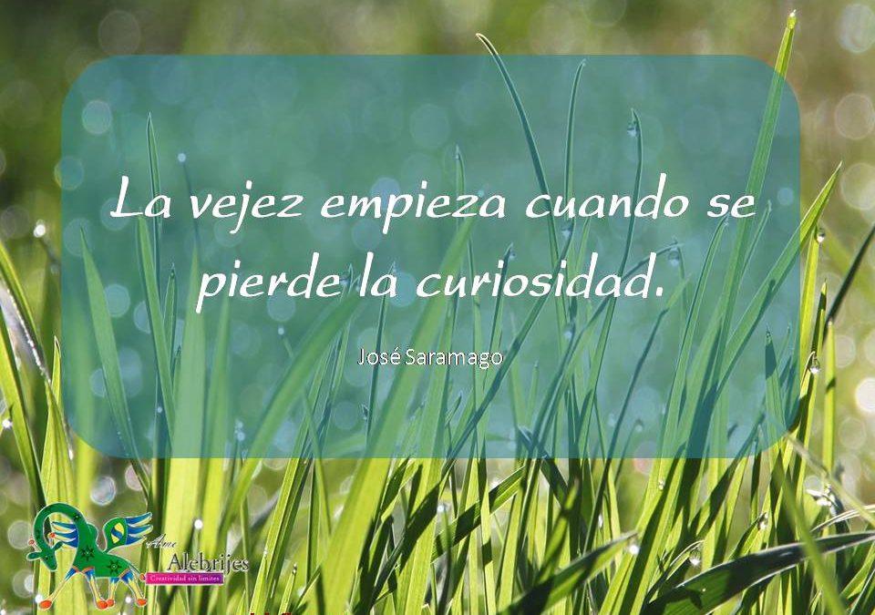 Frases celebres José Saramago 10