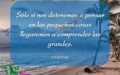 Frases celebres José Saramago 12