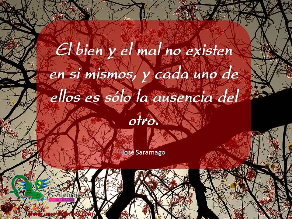 Frases celebres José Saramago 14