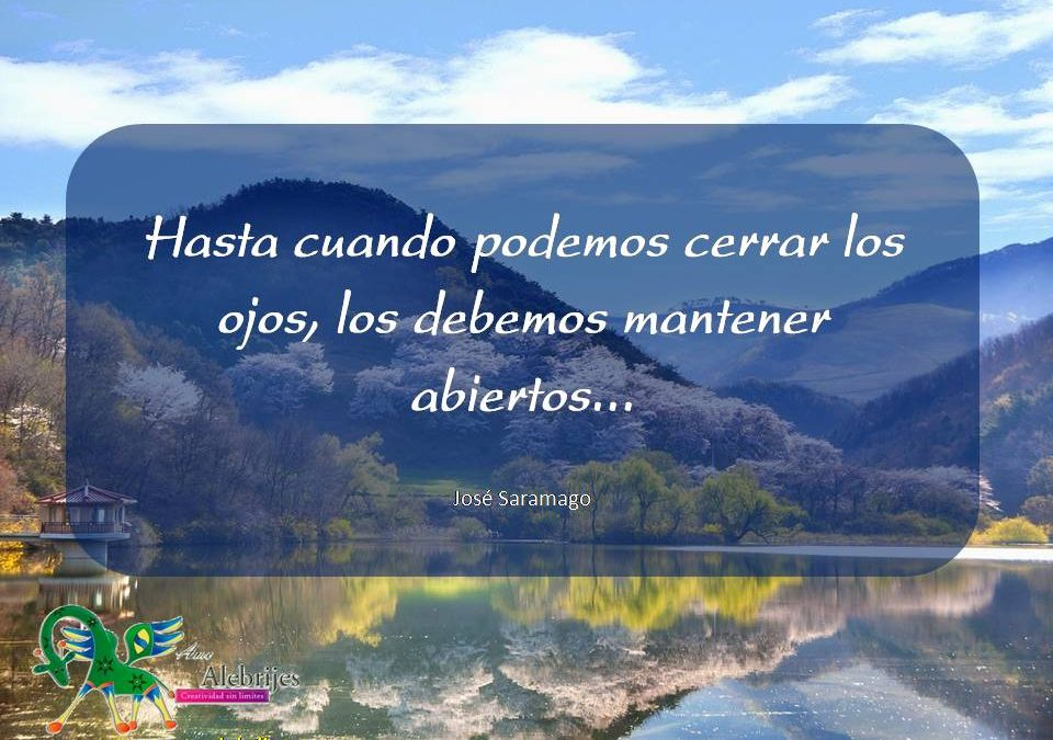 Frases celebres José Saramago 16