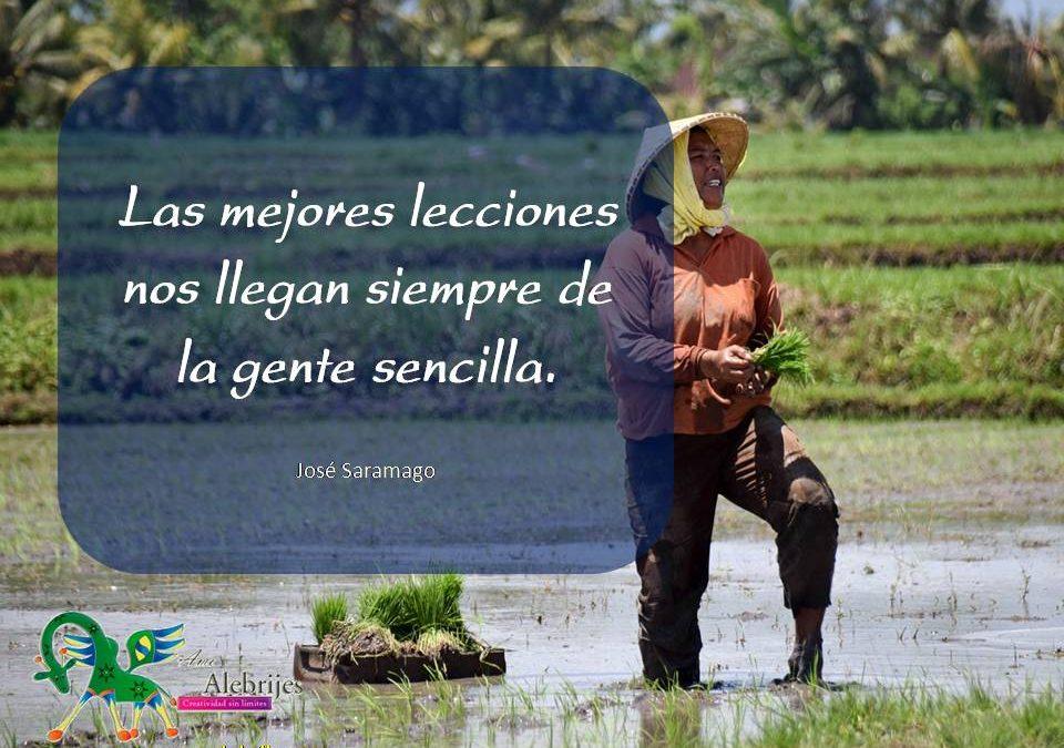 Frases celebres José Saramago 17