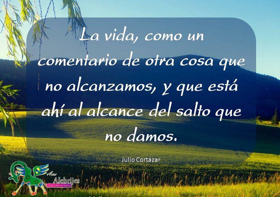 Frases celebres Julio Cortázar 5