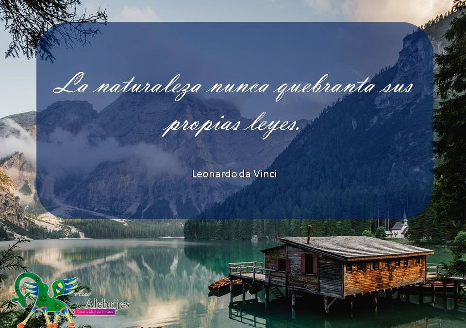Frases celebres Leonardo da Vinci 2
