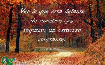 Frases celebres George Orwell 3