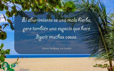 Frases celebres Johann Wolfgang von Goethe 6