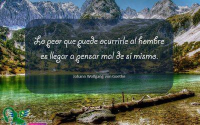 Frases celebres Johann Wolfgang von Goethe 11