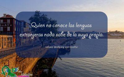 Frases celebres Johann Wolfgang von Goethe 14